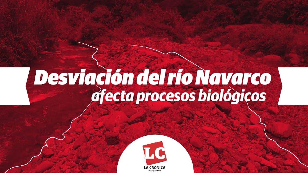 Desviación del río Navarco afecta procesos biológicos