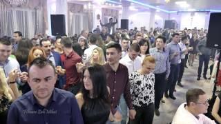 Olguța Berbec, Remus Novac Si Borko Radivojevici Tigrovi LIVE