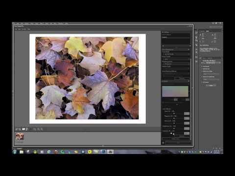 Printing on the Canon Pixma PRO-100 from various Sources