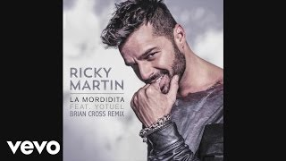 Ricky Martin - La Mordidita (Brian Cross Remix)[Cover Audio] ft. Yotuel