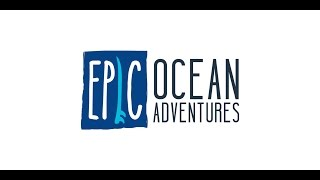Live an epic adventure - amazing surf lessons, spectacular tours