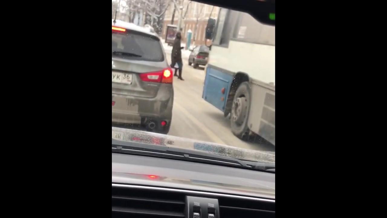 В Воронеже собака переходит дорогу на двух ногах
