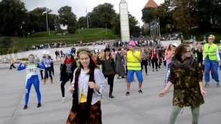 Ylvis - The Fox (flash mob)