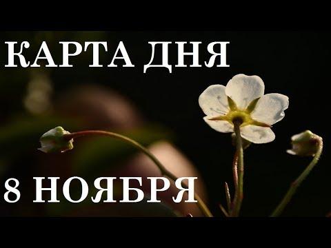 КАРТА ДНЯ 8 НОЯБРЯ ТАРО ГОРОСКОП