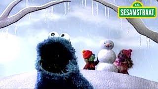 Elk seizoen een koekje - Koekiemonster - Liedje - Sesamstraat