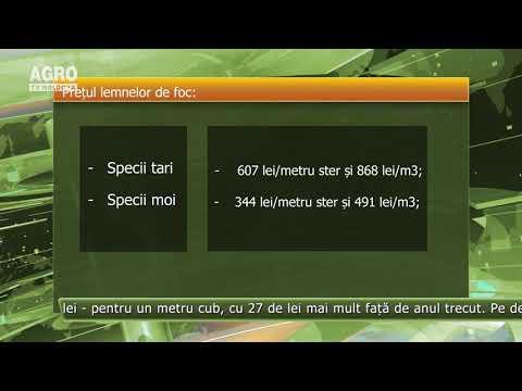 Opțiuni de tranzacționare cu un videoclip de depozit minim