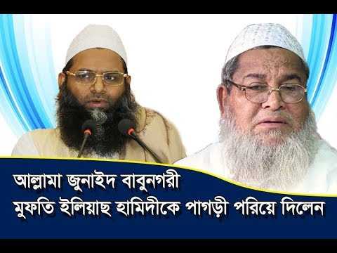 Allama Junaid Babunagari,আল্লামা জুনাইদ বাবুনগরী,Alhaj Hafez Mawlana Mufti Ilyas Hamidi