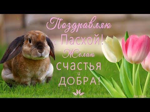💗Самое красивое поздравление с Праздником Пасхи!💗Поздравляю с Пасхой! Желаю счастья и добра!💗