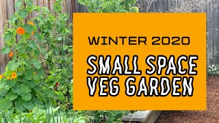 Backyard California VEGETABLE GARDEN TOUR in a SMALL SPACE - BIOINTENSIVE GROWING for HIGHER  YIELDS