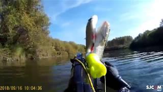 Рыбалка на река немда костромская область карта