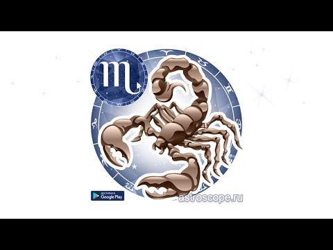 Скорпион (приложение на Android)