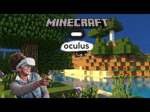 Oculus Go Adb