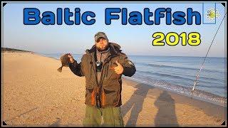 Как правильно ловить камбалу в балтийском море