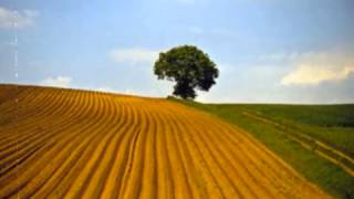 """Video thumbnail of """"Boards of Canada- Echus"""""""