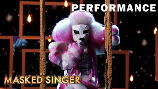 """Poodle sings """"Time After Time"""" 