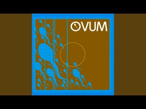 Dirty Grooves (David Alvarado Mix)