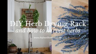 DIY Herb Drying Rack (and How To Harvest Herbs)
