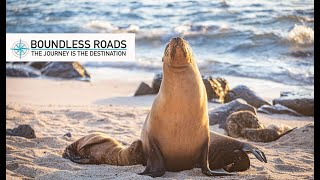 Galapagos Islands travel guide