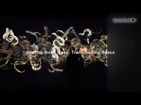 Sharing Rock Mass, Transcending Space