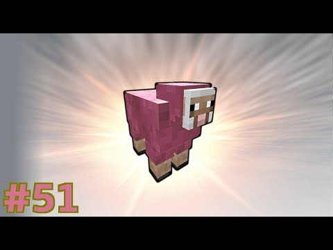 Quest for Rare Pink Sheep! | ProtoTech SMP #51