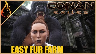 Easy Fur Farm Conan Exiles 2018 Beginner Tips