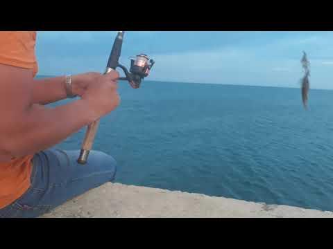 Рыбалка!!!