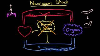 Neurogenic Shock
