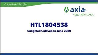 HTL1804538 2020 3