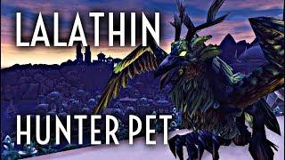 WoW Guide - Lalathin Solo Tame - Hunter Pet