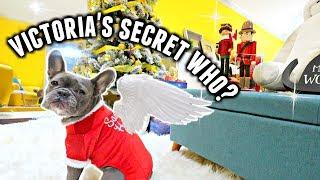 I threw my dogs their own VICTORIA'S SECRET FASHION SHOW! | Vlogmas day 20