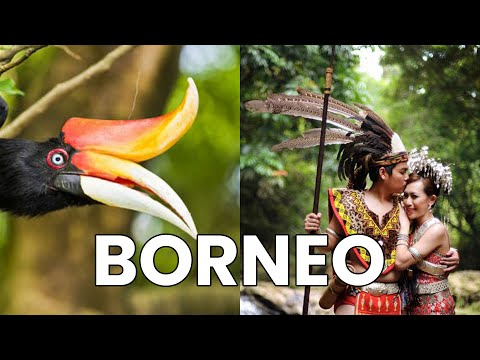 Perang Jepun di Sabah – 10 Fakta Borneo yang Orang Jarang Sebut