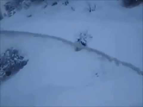 RPM217 Snow Blower