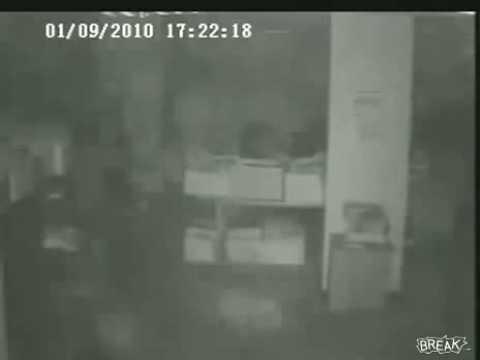 Dog Senses Arcata Earthquake at News Station