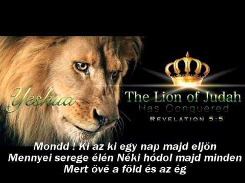 fájdalom az oroszlán vállízületében)