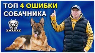 Топ 4 Ошибки собачника | Самые важные команды с собакой | Дрессировка собаки | Кинолог о наболевшем