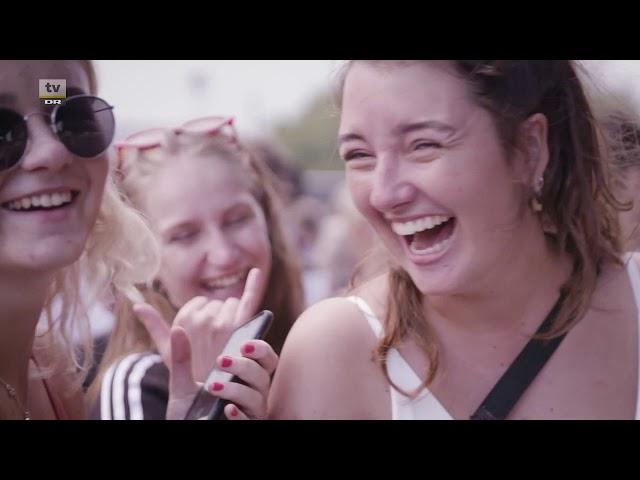 Die besten Festivals Dänemarks