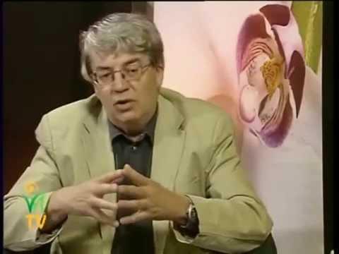 Az enterobiasis jóváhagyásának mintája