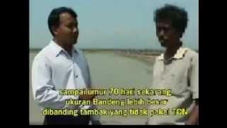 preview picture of video 'TIPS TAMBAK BANDENG 1 - PATI JAWA TENGAH'