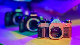New Canon Cameras In 2019