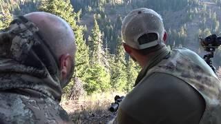 Backcountry Bear Hunt | Blue Mountains Washington State
