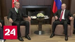 Сочинские поговорки и шутки: Путин и Эрдоган определили судьбу турецких томатов