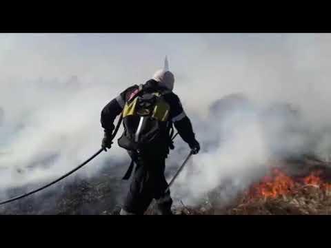 Video: Extinción de focos de incendios forestales