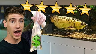 Shopping at the RICHEST AQUARIUM in the World!! ... (rare fish inside)