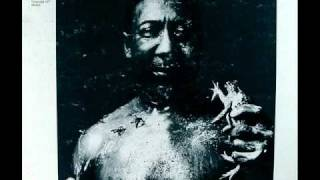 Muddy Waters - I Am The Blues