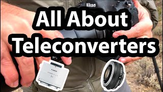 All About Teleconverters (TCs)