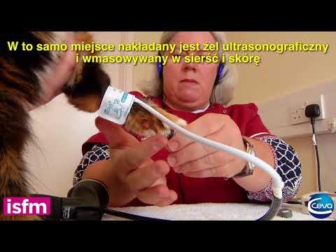 Technika masażu z nadciśnieniem z metodami