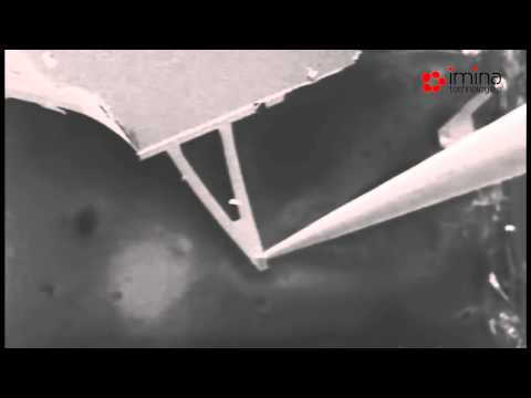 Imina Technologies: Flexure testing of a MEMS AFM cantilever