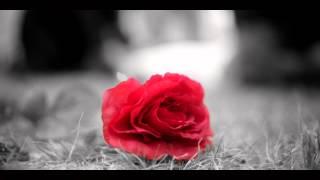 """Dream On"" - Aerosmith Music Video"