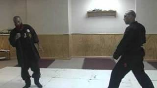 DAKENTAIJUTSU EMPTY HAND APPLYING WEAPON PATTERNS