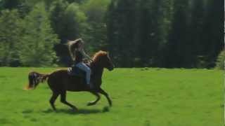 preview picture of video 'Horseback Riding Ottawa - Is there horseback riding in the winter?'